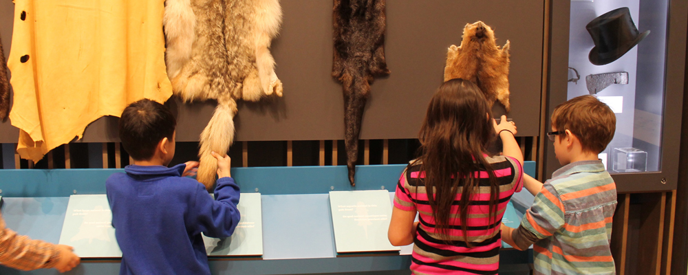 Kids exploring fur samples