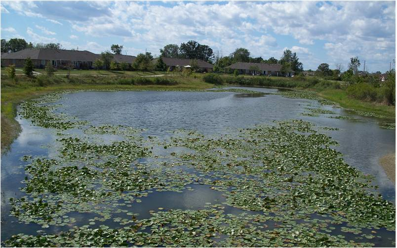 Stormwater Management Ponds