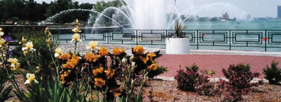 A close shot of the fountain and surrounding flowers in Conventry Gardens