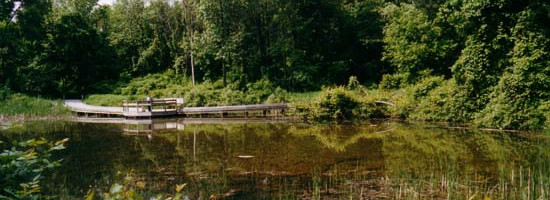 a landscape view of Ojibway Park